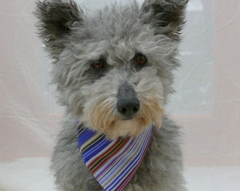 Purple Blue dog bandana - Striped pet bandana - Violet dog scarf - Pet clothing - Dog gift - Tie on bandana - Cotton - Purple haze dog scarf