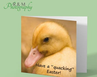 Happy Easter card - duckling - chick - funny easter card - duckling easter card - easter greetings card - quacking easter - quack joke card