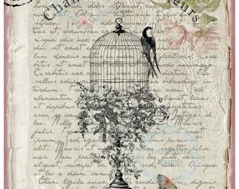 Wall Art Print A3 Shabby Chic Birdcage and Butterfly  matt - unframed