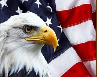 Patriotic Eagle Coaster Set