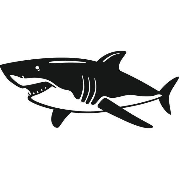 Great White Shark 2 Jaws Teeth Attack Eat Fish Prey Ocean