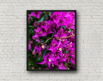 Lila Blumen Print / Digital Download / Fine-Art Print / Kunst / Home Decor / Farbe Fotografie / Natur Print / Naturfotografie