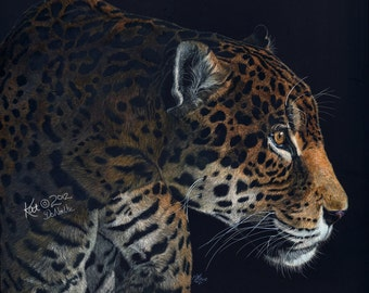 Emergence Custom Portrait Scratch Art Jaguar