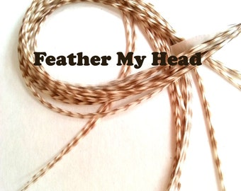 """10 Long Feather Hair Extensions, Dun Grizzly, High Quality Whiting Farms 9""""-12"""" (22.86cm -30.48cm)"""