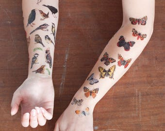 Butterfly & Moth Temporary Tattoos | Temporary Tattoo Set | British Butterflies and Moths | Butterfly Tattoos | Illustrated Wildlife Tattoos