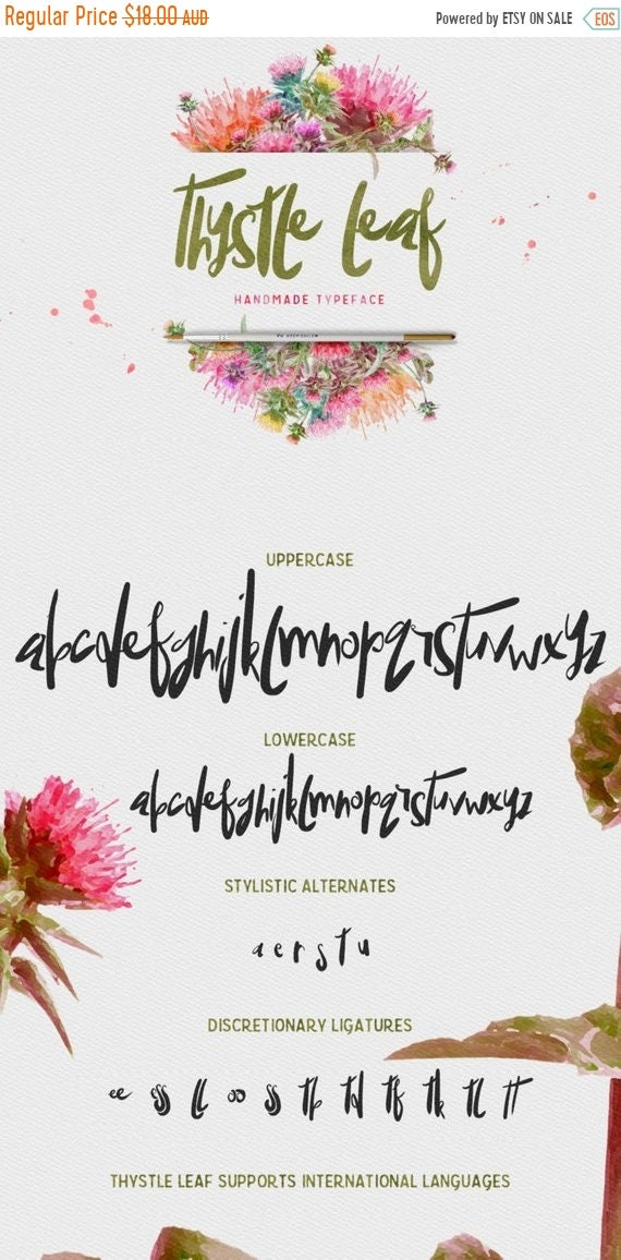 70% OFF Sale Thystle Leaf Typeface - Display Font - Handmade semi script with irregular baseline