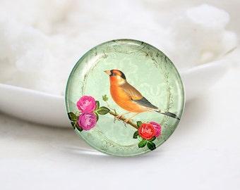 10mm 12mm 14mm 16mm 18mm 20mm 25mm 30mm Handmade Round Photo Glass Cabs Cover-Bird (P1934)