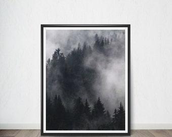 Forest Digital print Poster , Art Print, Digital Art, Digital Art Print, Digital Artworks, Digital Print Art, Digital Art Download