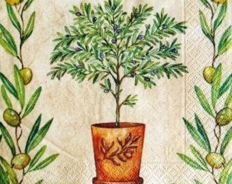 TOWEL in paper Olives and olive #AL043 jar
