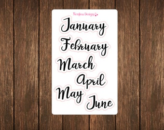 January-June Monthly Planner Stickers for The ECLP