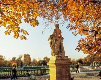 Paris Photography Luxembourg Garden autumn, changing leaves, statue, quiet in the city