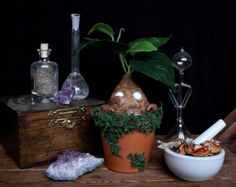 Mandragora Potted Sculpture, Mandrake Root Figurine, Witch Ingredient, Curiosity Cabinet Artifact, Harry Potter Herbology, Fantastic Beast
