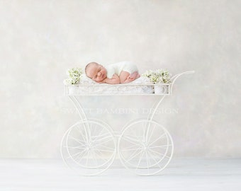 Newborn Photography Digital Backdrop for girls - Lovely ornamental carriage, with fresh white flowers