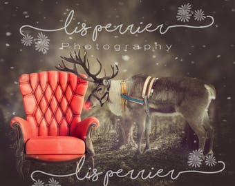 Reindeer Digital Background