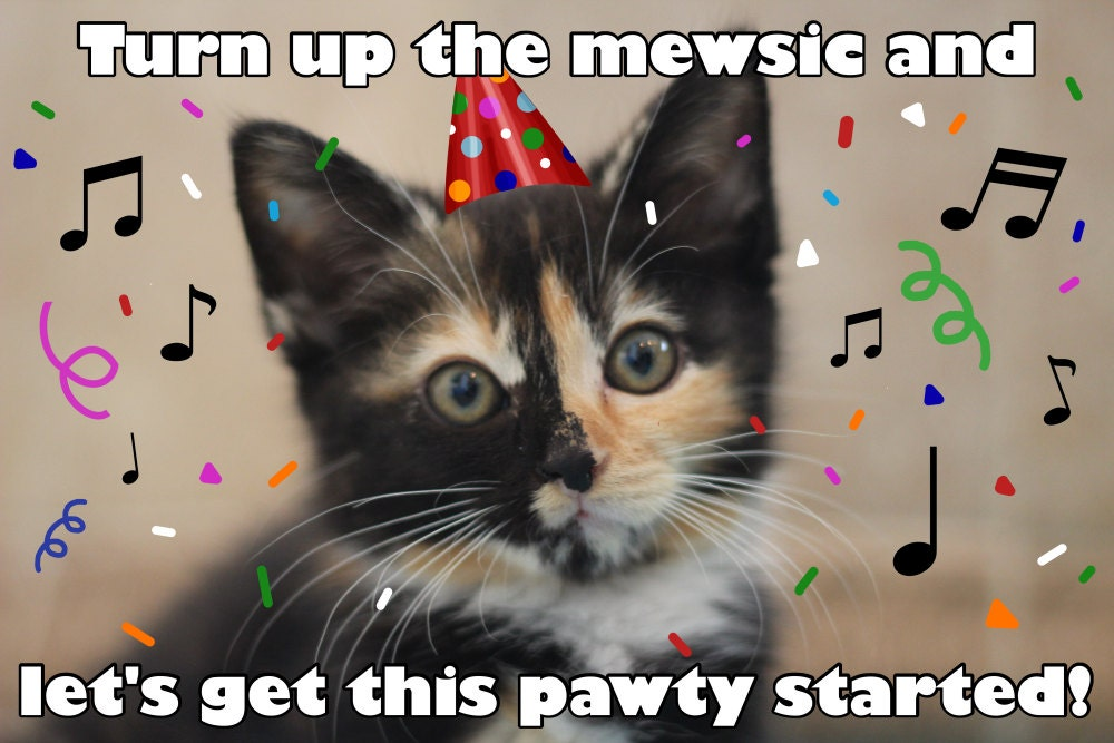 il_fullxfull.821477957_31b2?version=0 turn up the mewsic funny cat pun card cat pun birthday