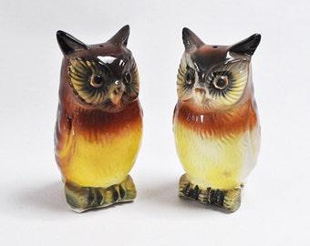 Adorable Vintage Pair of Ceramic Owl Salt and Pepper Shaker Set