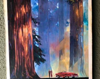 California Redwood decoupage, on distressed wood.
