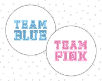 Team pink team blue stickers - Gender reveal stickers - Gender reveal party - Boy or girl - He or she - Pink or blue (RW044)