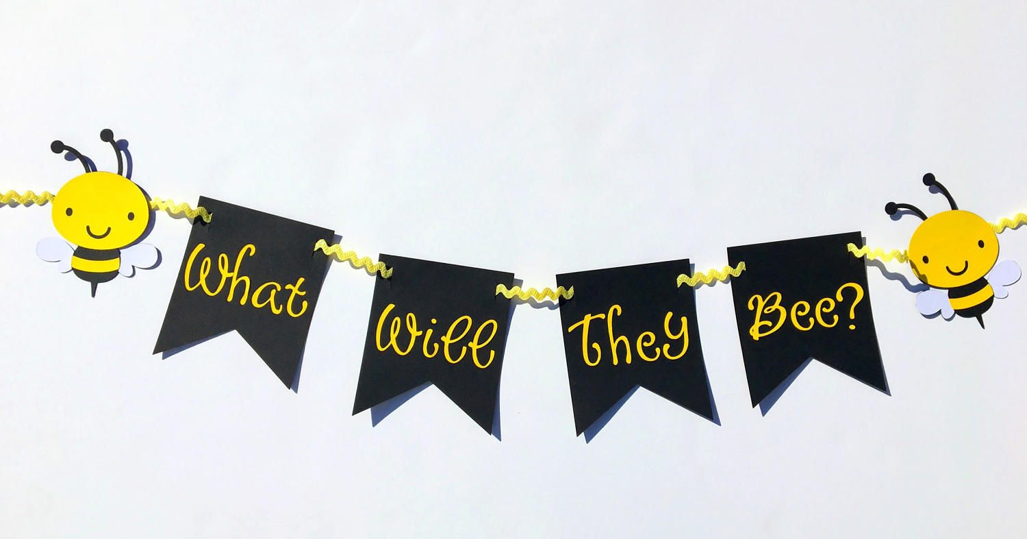 What Will They Bee Twins Gender Reveal Party Decorations