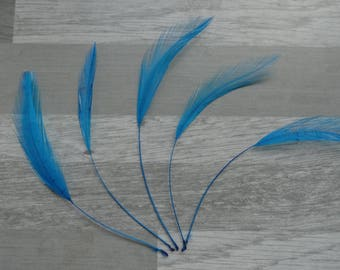 set of 5 spinning dyed turquoise rooster