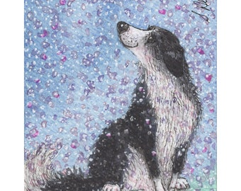Border Collie dog 8x10 print sheepdog dreaming of spring blossom time when apple blossom falls - from a watercolour painting by Susan Alison