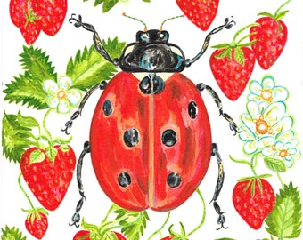 Ladybird in the Strawberry patch