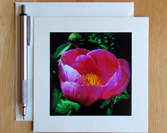 Peony Note Card, Pink Peony, Flower Note Cards, Photo Note Cards, Notecards, Stationery, Blank Cards, Nature Note Cards, Floral Note Cards