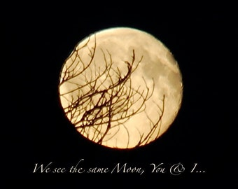 We see the same moon, Full Moon, black & gold moonphase art, moon behind tree branches, tree silhouette, black night sky, nature photo