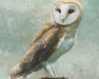 Barn Owl #2 fine art prints from an original painting by Dorset artist Cliff Towler..