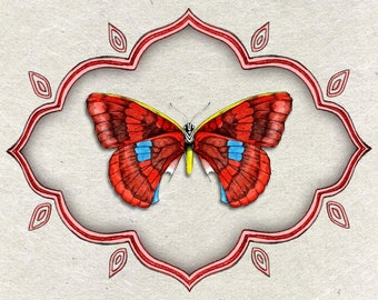 Greeting card - Butterfly - original creation