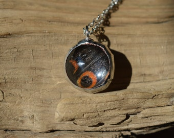 Real Butterfly Spherical Pendant Necklace