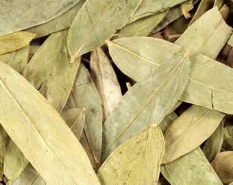 Senna Leaf - Certified Organic