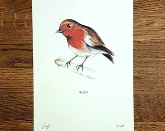 Robin - Wildlife portrait - A5 Fine Art Print - Limited Edition of 25