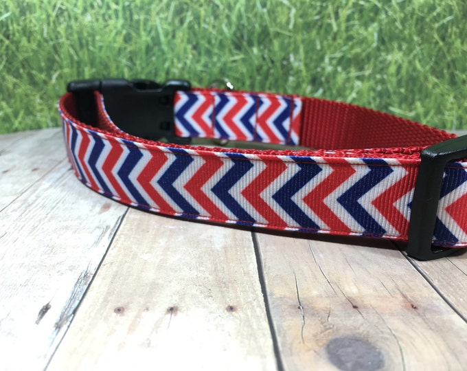"The Gendry | Designer 1"" Width Dog Collar 