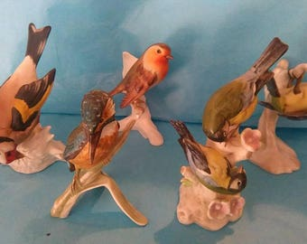 Collection of Goebel china birds