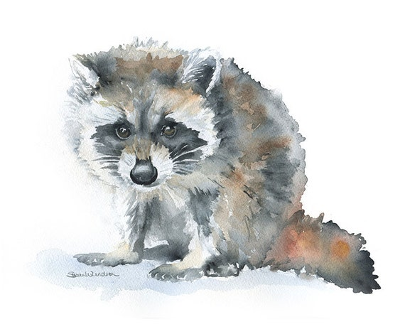Raccoon Watercolor Painting Giclee Print 10 X 8 Nursery Art