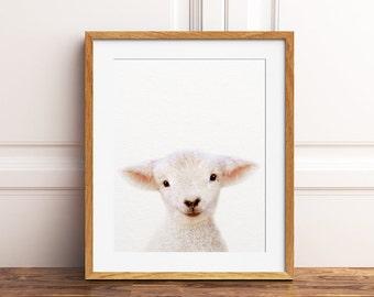 Lamb Print, Nursery Decor, Baby Lamb Print, Animal Art, Lamb Photo, Farm Animal Prints, Baby Animals, Nursery Wall Art, Kids Room Printable