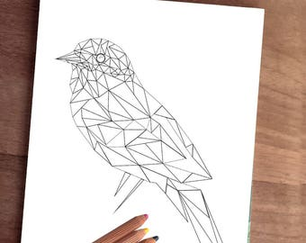 Animal coloring page, adult coloring page, digital BIRD coloring, zentangle bird, Bird printable, digital bird, animal coloring book, nature