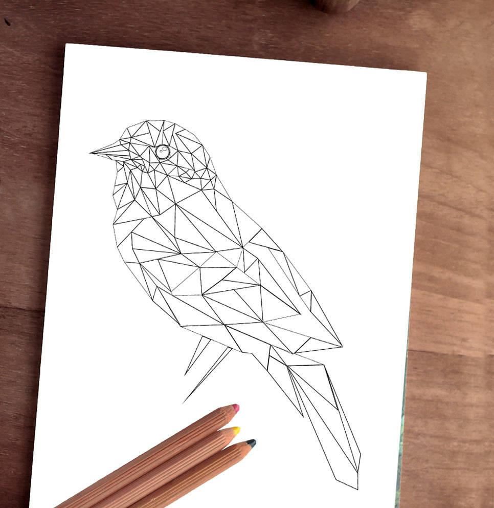 Tier Malvorlagen Seite Erwachsene Malvorlagen digitale Vogel