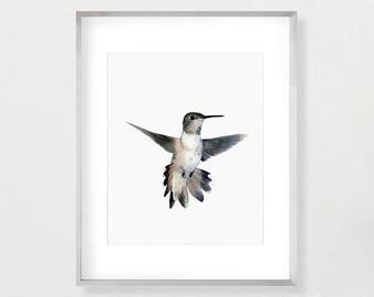 Hummingbird Print, Hummingbird Art, Hummingbird Wall Art, Bird Wall Art Print, Art Printable, Bird Print, Hummingbird Poster, Art Print