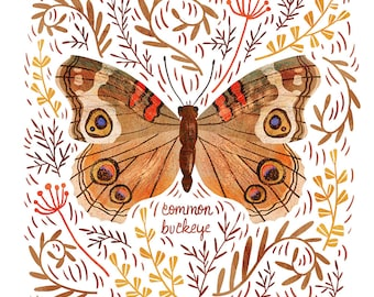 Common Buckeye Butterfly Art Print - square digital illustration by Stephanie Fizer Coleman