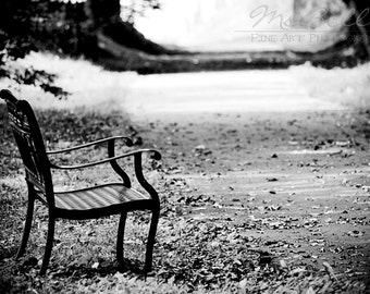 Black and White Photography - A Quiet Place - 4x6 fine art print - park bench woodland serene light shadow monochromatic wall art home decor