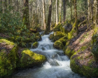 Forest Stream - Digital Impressionist Painting - Digital Download