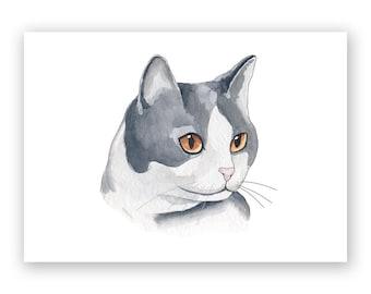 Black & White Cat - 5 x 7 Art Print