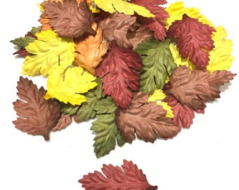 Bright Mix Oak Mulberry Paper Leaves Leaf24
