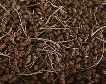 Box of mini pine cones