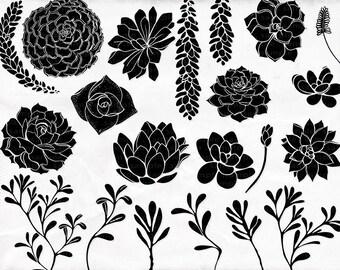 Succulent ClipArt Silhouettes + Photoshop Brush, Hens & Chicks, Plant Clip Art, Wedding Invitation DIY Printable Digital Stamps
