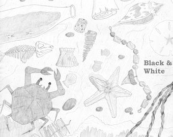 Beachcomber's Dream [Large]