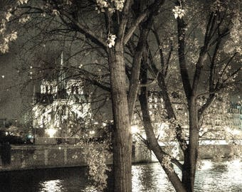 "VLADIMIR FILOSOFOV ""EDGES of the SEINE with NOTRE DAME"" Paris art photo"