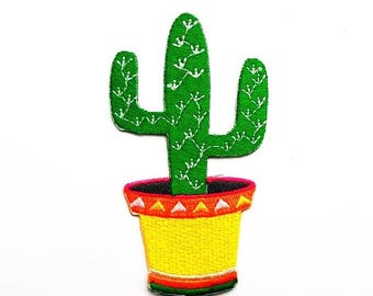 Cute cactus patch.